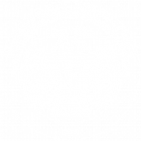 Aula Virtual FMVZ