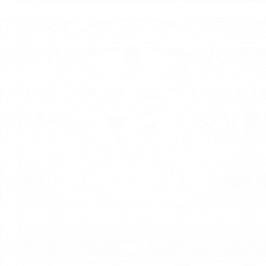 AulaVirtualFMVZ